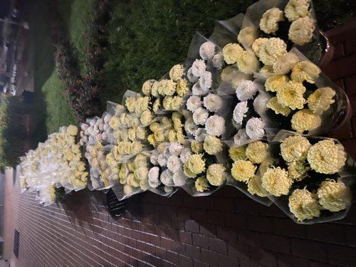 Zapraszamy po kwiaty (bezpłatnie)
